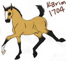 1704 Karim by rempage