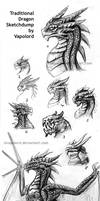 Traditional Dragon Sketchdump 1 By Vapolord