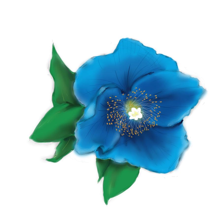 Tattoo Design 1 Blue Poppy By Awittystatement On Deviantart