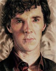 Just Sherlock. Nothing else by Vesea
