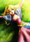 2011_07_23 Skyward Zelda