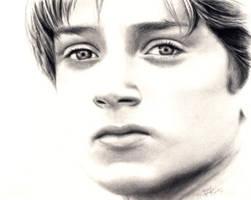 LOTR - Elijah Wood by rebekahlynn