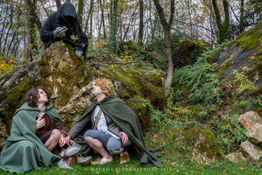 Frodo and Sam hiding from a Nazgul