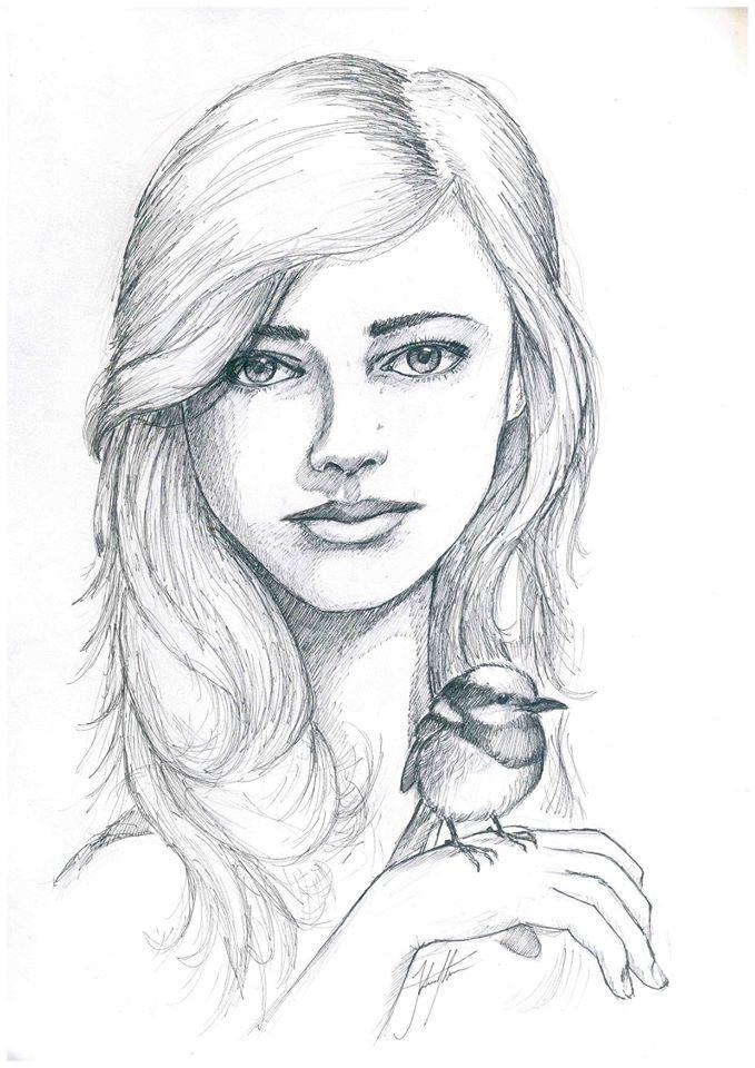 Wren by John-Stone-Art