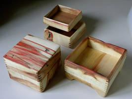 Box Elder beauties by carvenaked