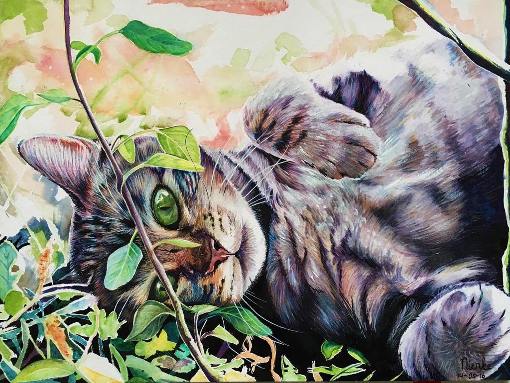 Cat by Nienke15