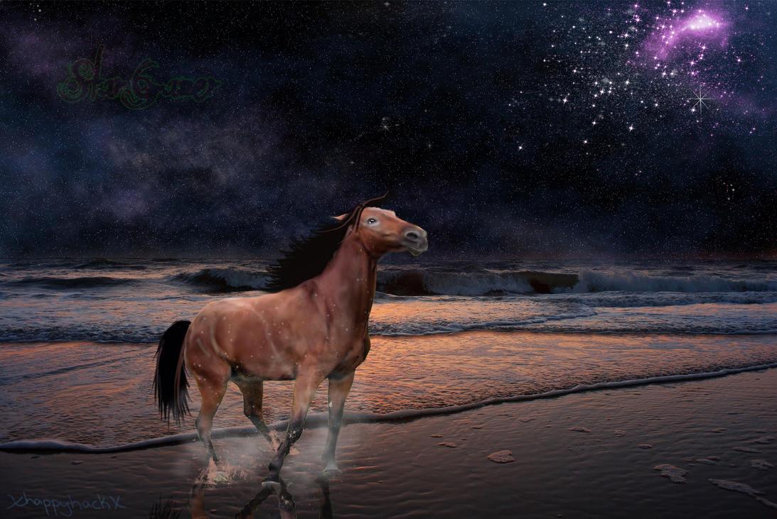 StarGazer by xHappyHackx