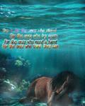 Underwater inspiration by xHappyHackx