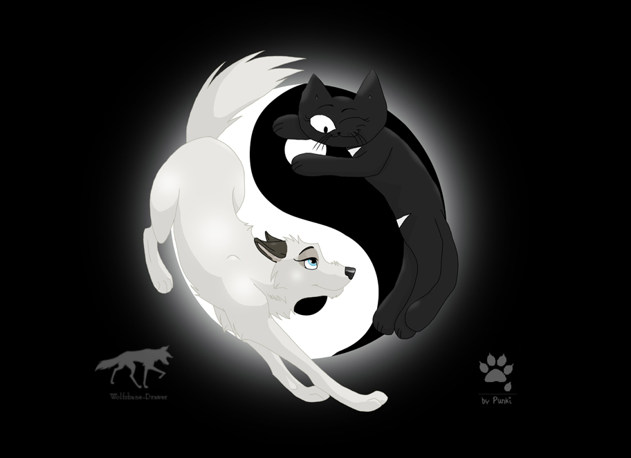 Ying Yang favourites by Riska-of-the-Moon on DeviantArt