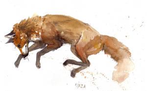 Fox by AriaDog