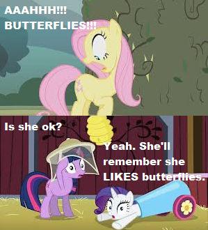 MLP Fluttershy Meme