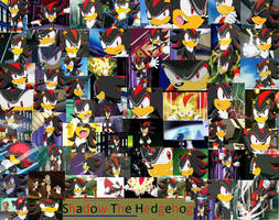 Shadow The Hedgehog by PrincessEmerald7