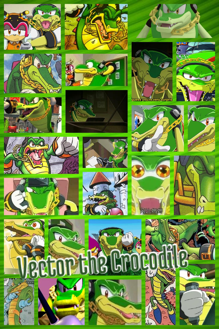 Viewing Gallery For - Vector The Crocodile And Vanilla The RabbitVanilla The Rabbit And Vector The Crocodile