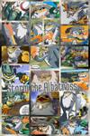 Storm the Albatross