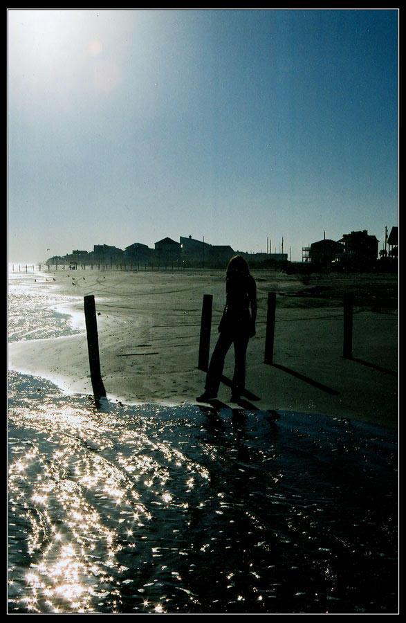 Honey on the Beach by neolmas