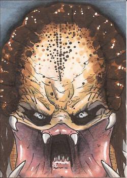 The Predator Sketch Card