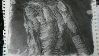 Espalda by alonsopm23