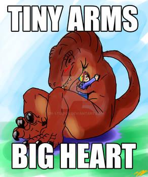 Gift:  King Sized Hugs
