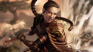 Samurai Girl Warrior Faction