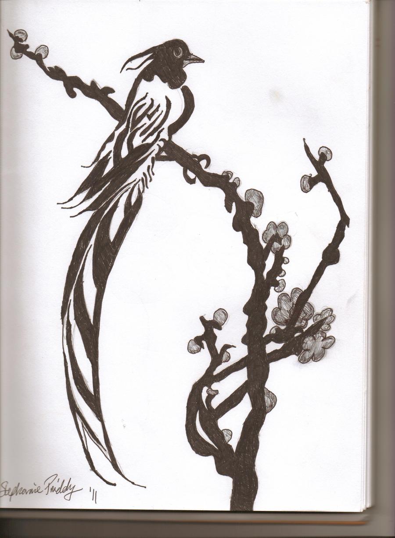 Bird of paradise animal drawing - photo#4