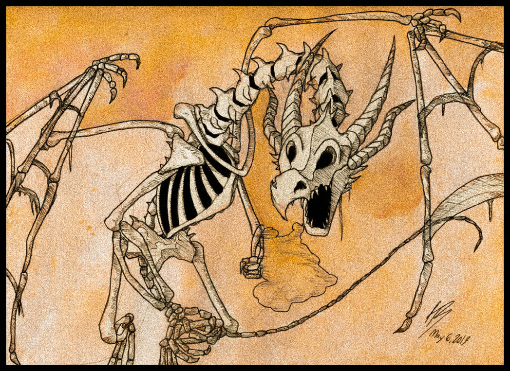 skeleton dragon by DracoPhobos