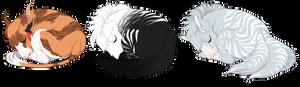 Sleepy Pups Leto, Lucius, Bernard