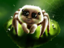 spider by AliceSad