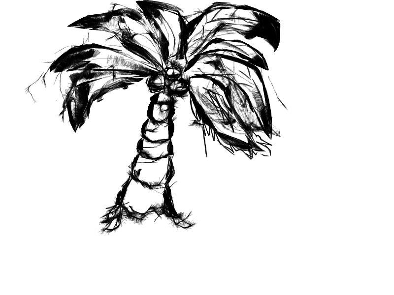 Line Drawing Palm Tree : Sketched out palm tree by nathaniolmh on deviantart