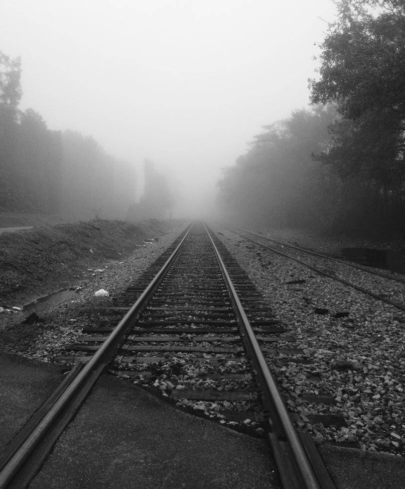 Foggy Tracks by wulfdragyn