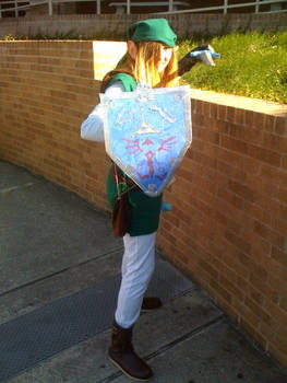 A Link Cosplayer
