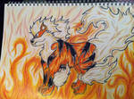 Flames Of Arcanine