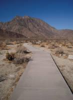 Pathway 10 by Llyzabeth