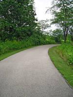 Pathway 12 by Llyzabeth