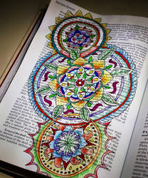 Altered Book: Medical Guide Mandala 2 by Llyzabeth
