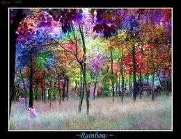 Rainbow by Dehearted