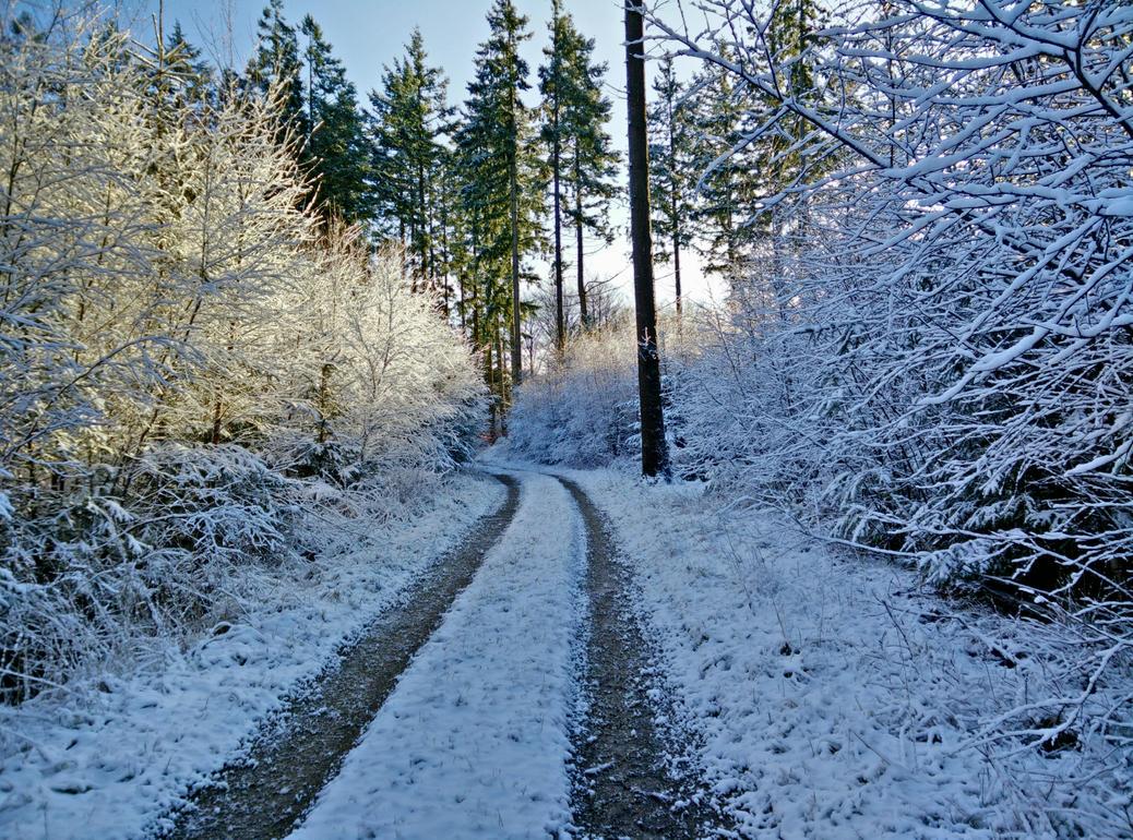 Snowy scenery by atomkat