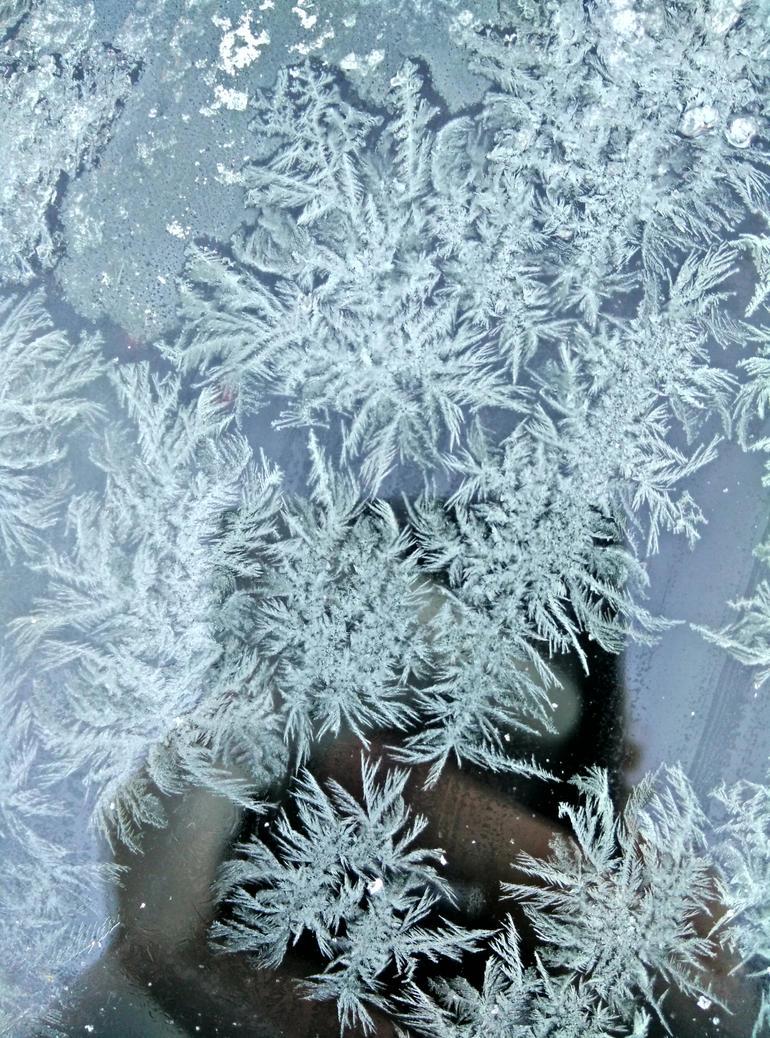 Frosty patterns on a windscreen by atomkat