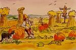 Shire pumpkin patch.