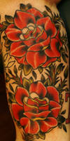 traditional roses by BrettPundt