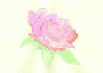 Watercolor Rose by izalithium