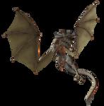 Zombie Dragon 003