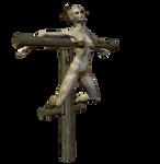 Crucify 006