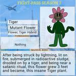 Tiger TGTF Fight-Pass