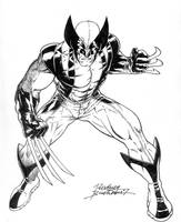 Wolverine Avenger by Buchemi