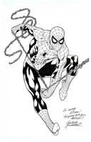 Spiderman commition by Buchemi