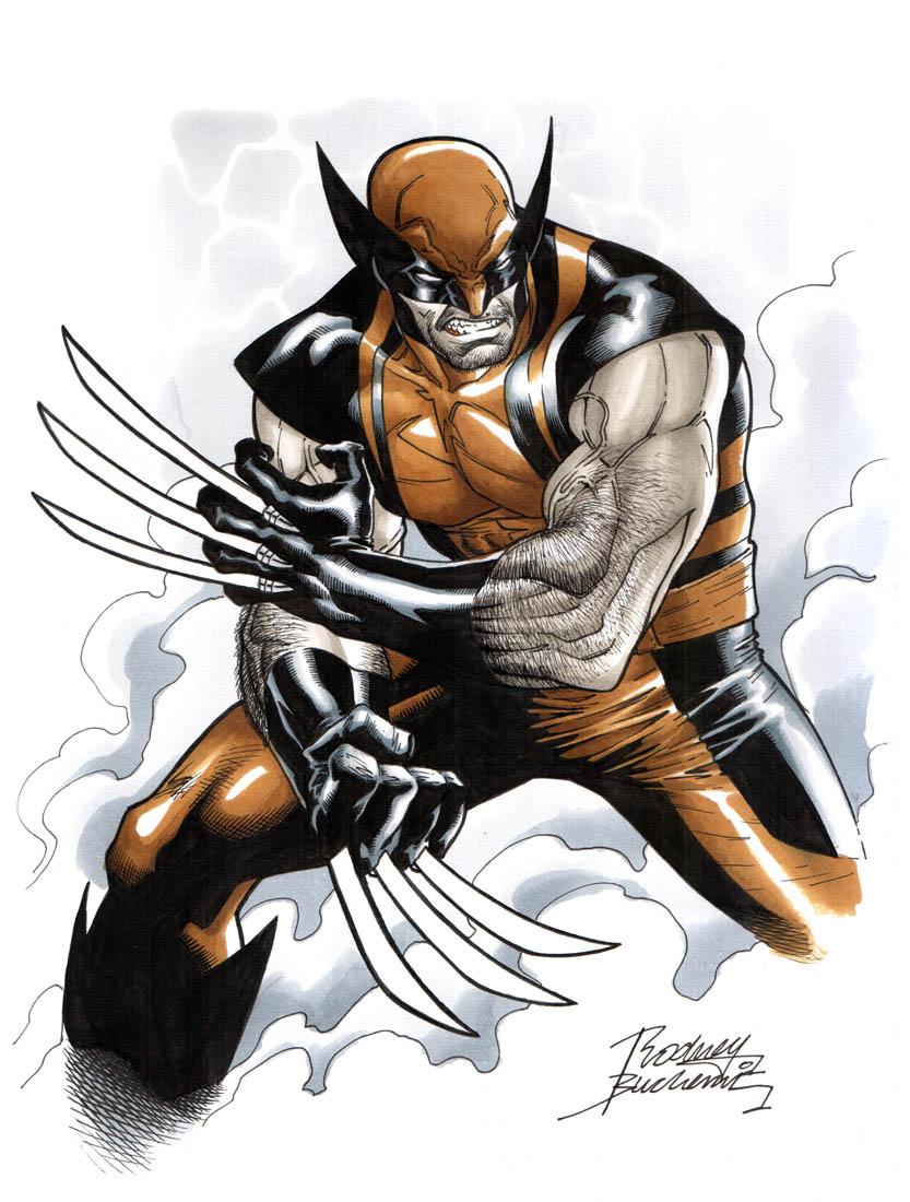 Wolverine by Buchemi