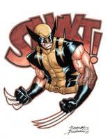 Wolverine Commission by Buchemi