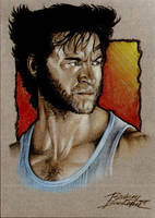 Logan aka Hugh Jackman by Buchemi