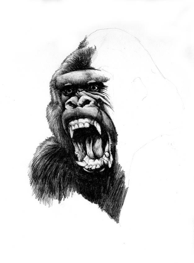 traditional gorilla head tattoo