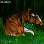 ~Altair~